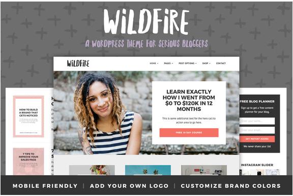 Wildfire wordpress themes