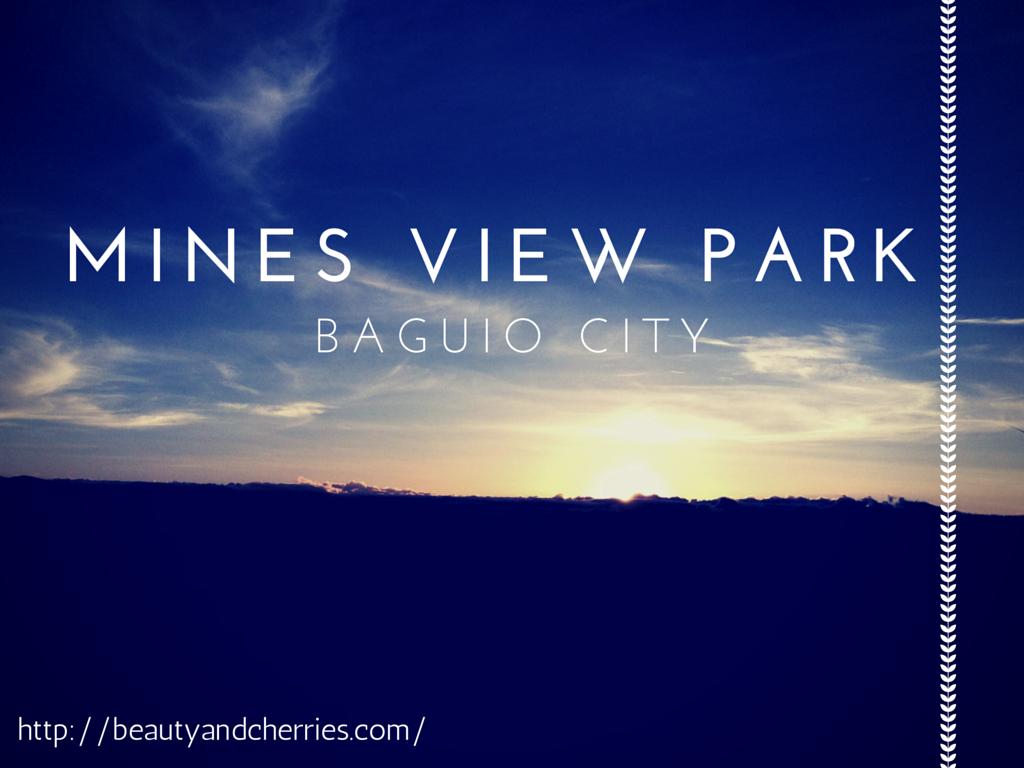 mines-view-park